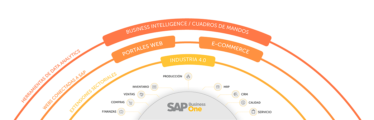 sap business one sector plasticos