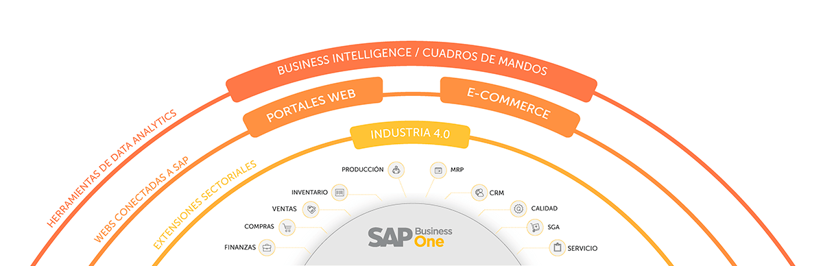 sap business one sector quimica