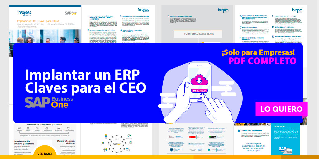 Descarga el PDF: Implantar un ERP. Claves para el CEO | SAP Business One
