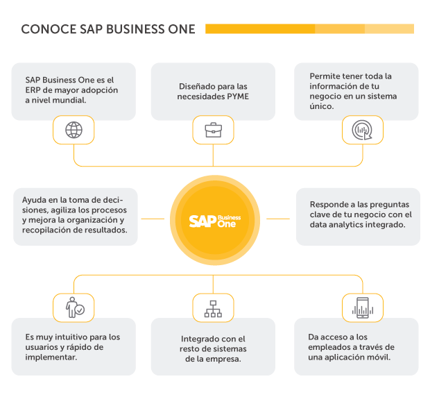 Conoce SAP Business One | Inforges
