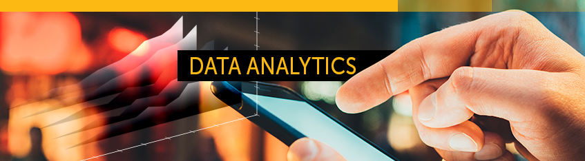 Data Analytics SAP Business One HANA