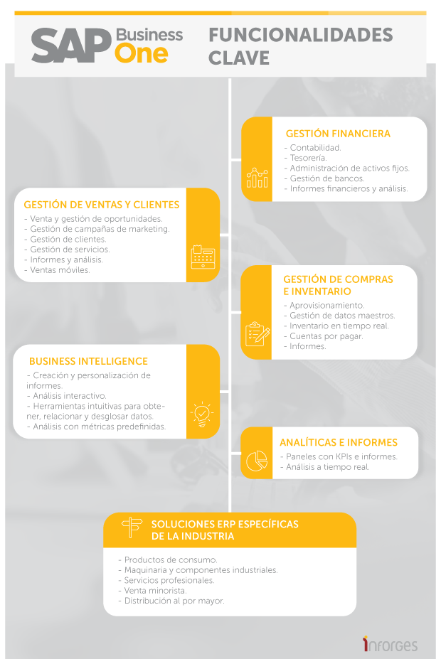 infografia sap business one solucion global - inforges