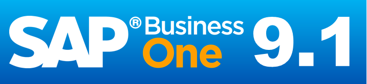 SAP Business One 9.1